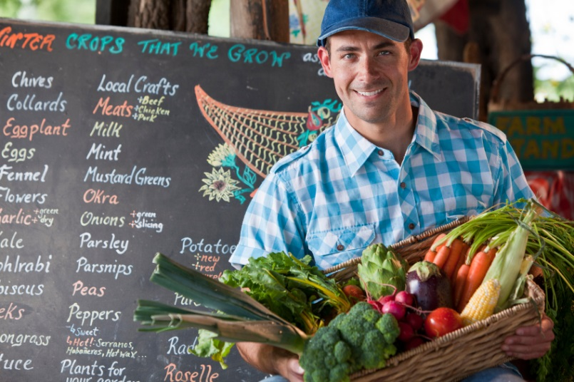 Holistic Nutrition Wellness Practitioner Diploma - Urban Farming - Online Education