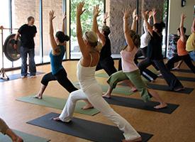 600 Hour Yoga Teacher Training